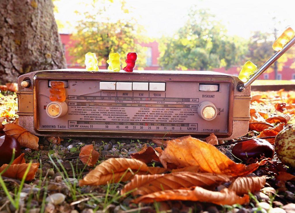 Radio im Herbstlaub